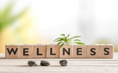 Holistic Chiropractor: Definition, Benefits, and More